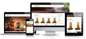 haleta-web-developers-agency-switzerland