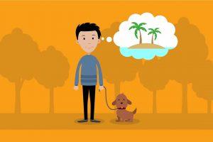 puppy-go-go-explanatory-video-web-agency